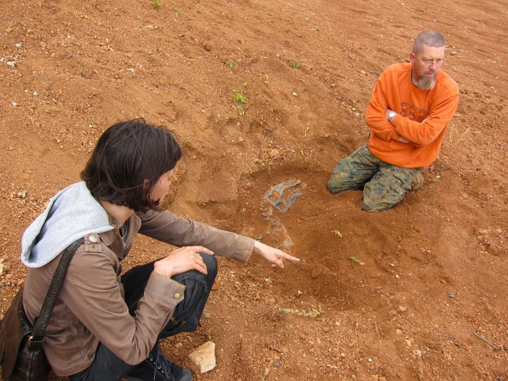 Звероящеры Пермского периода, река Вятка, аномальная зона Котельнич: ищем границы окаменелости